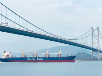 Pacific Basin Port Alice in Hong Kong